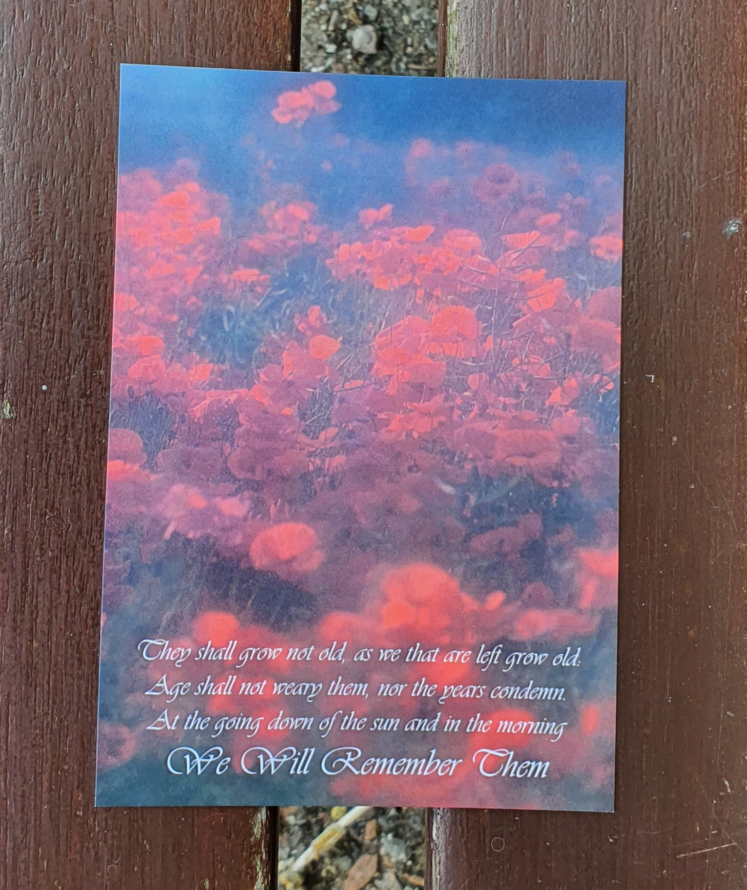 Postcard - Poppy