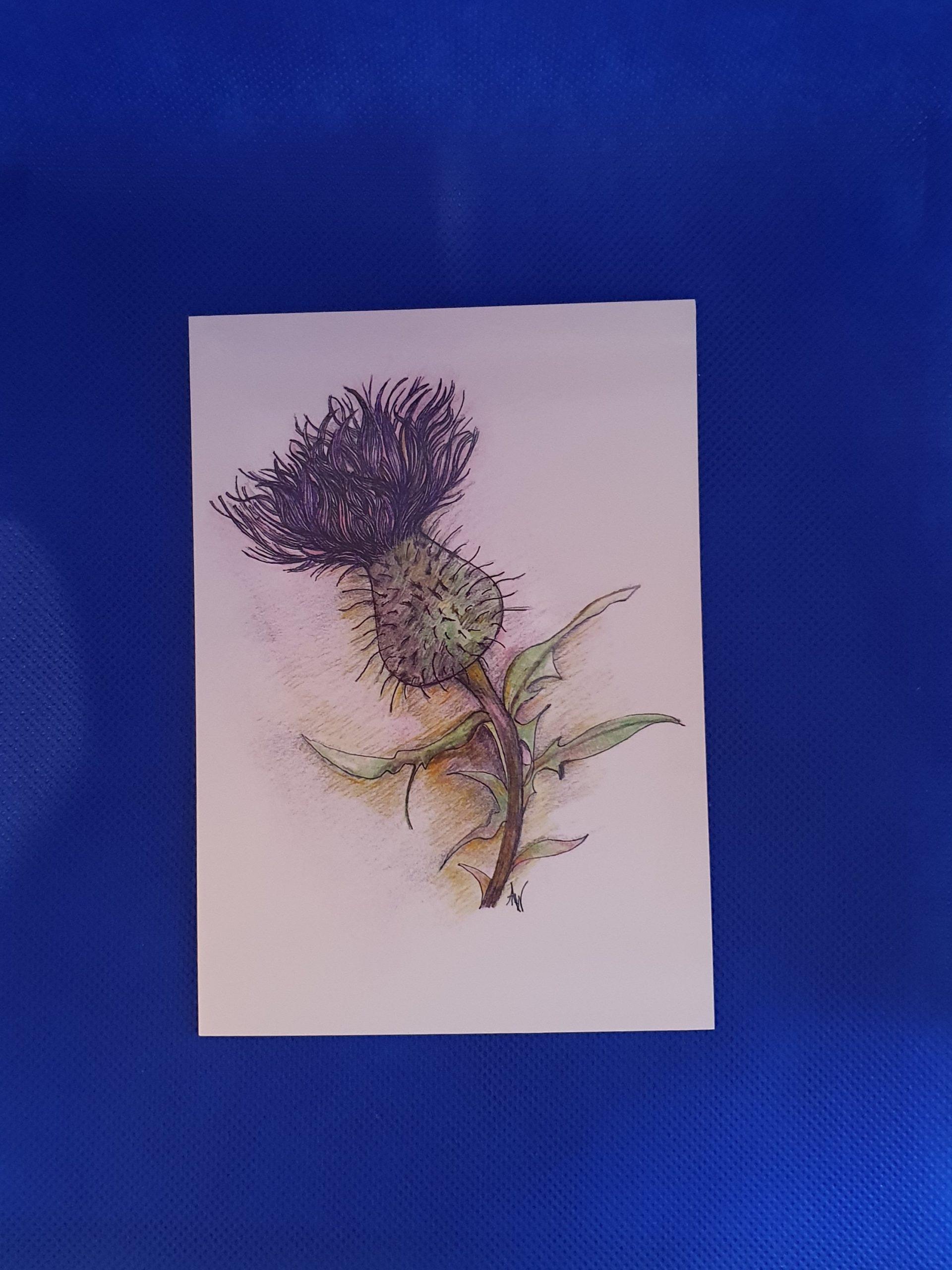Card - Thistle