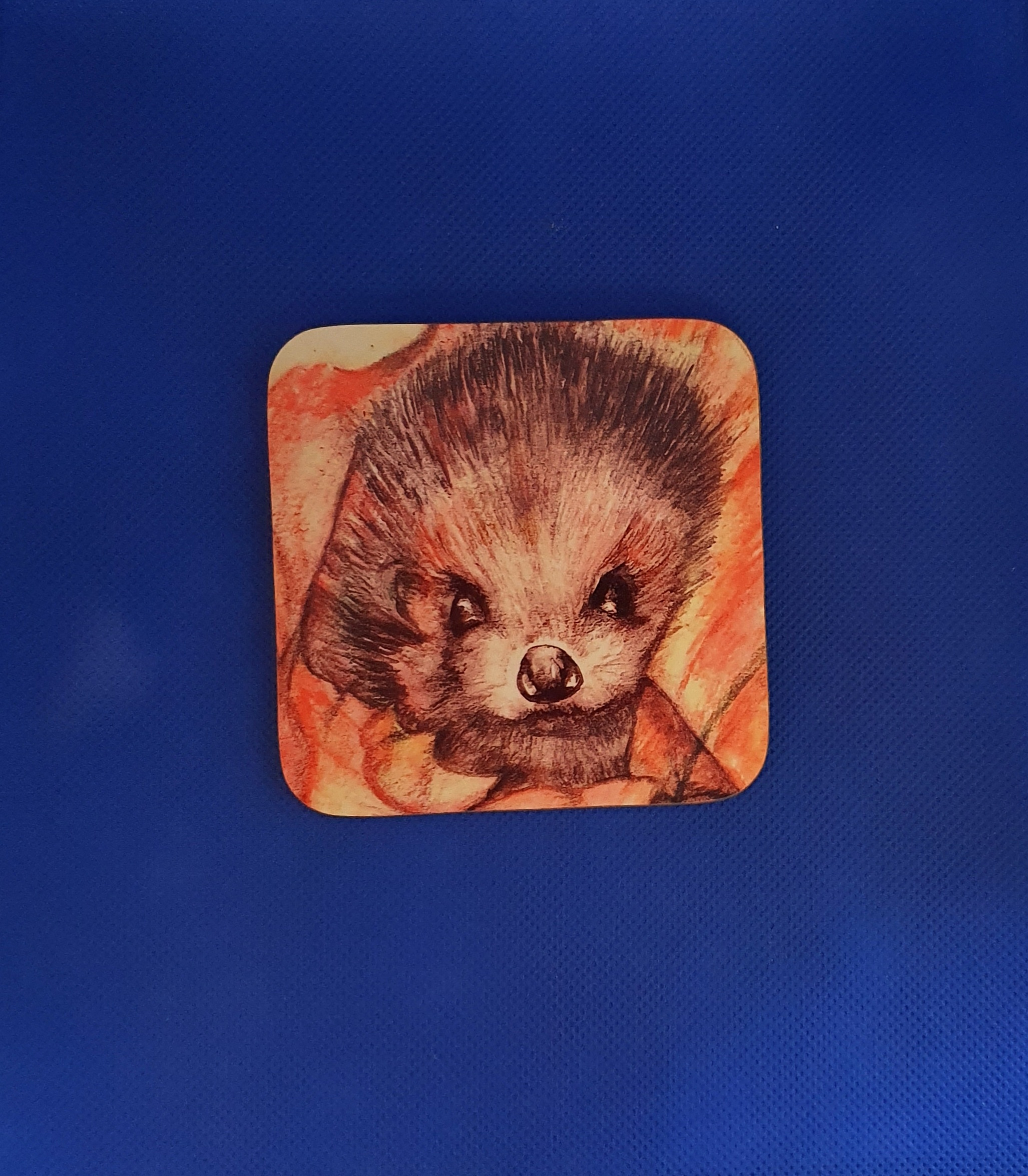 Coaster - Hedgehog